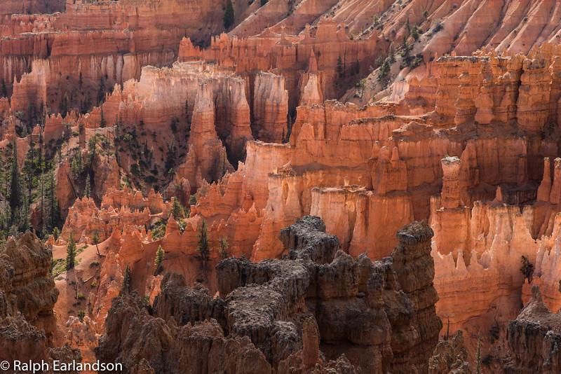 Along the Navajo Loop in Bryce Canyon.