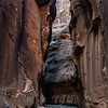 Peter in the Zion Narrows.