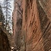 Zion's Hidden Canyon, above the Weeping Rock.