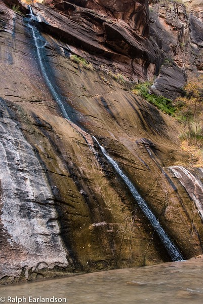 Waterfall in the Zion Narrows.