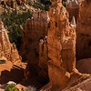Thor's Hammer as seen from the Navajo Loop in Bryce Canyon.