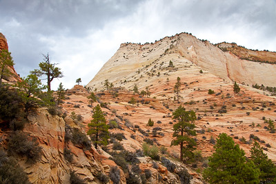 Bryce Canyon And Surrounding Area