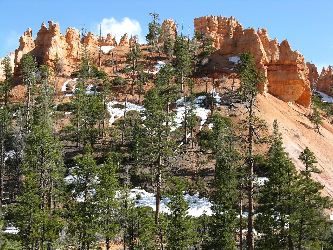 2011-04-20 Bryce trail 221