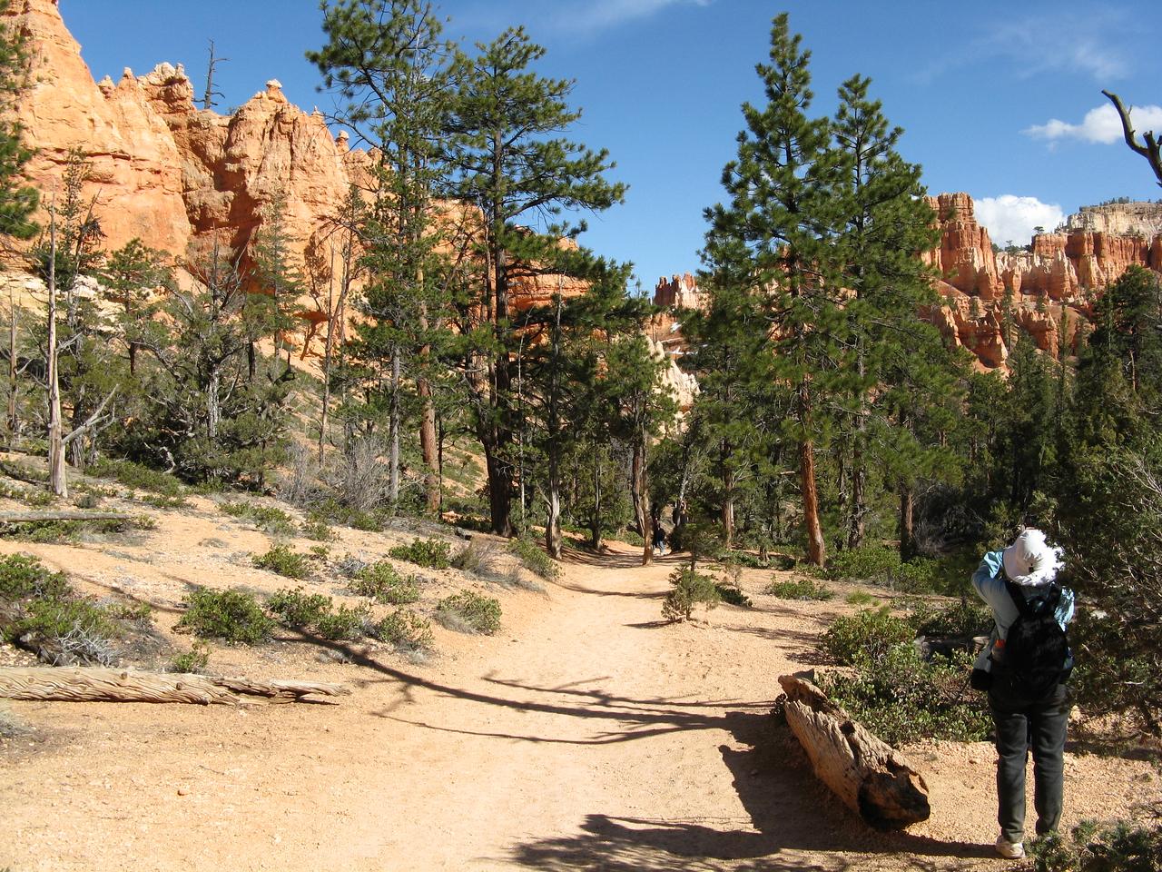 2011-04-20 Bryce trail 219