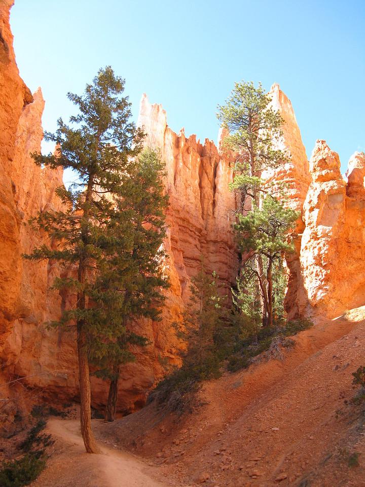 2011-04-20 Bryce trail 205