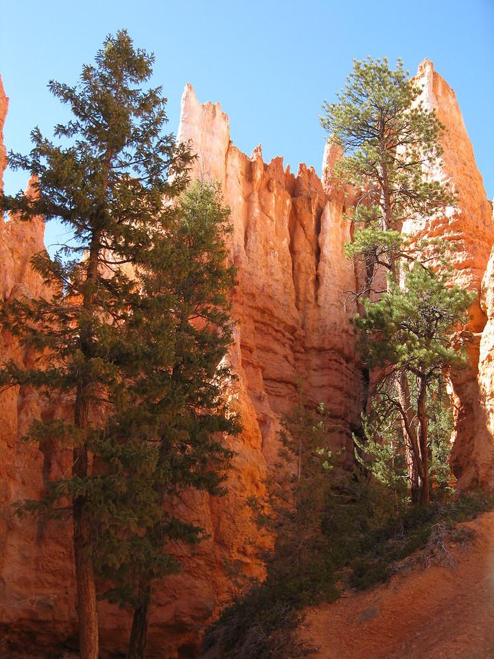 2011-04-20 Bryce trail 206