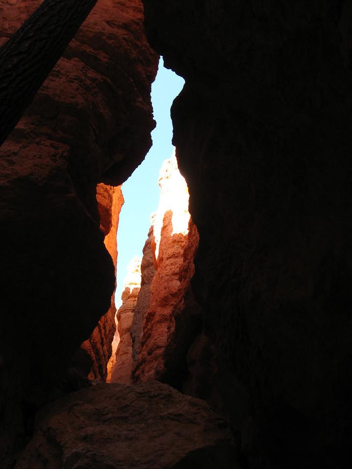2011-04-20 Bryce trail 211