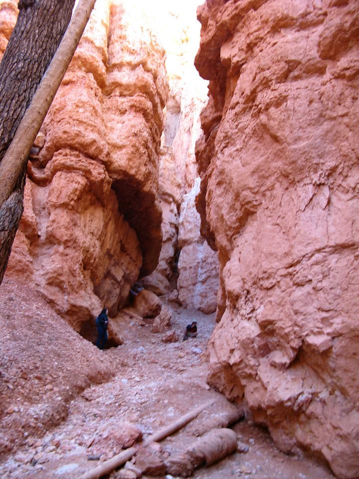 2011-04-20 Bryce trail 212