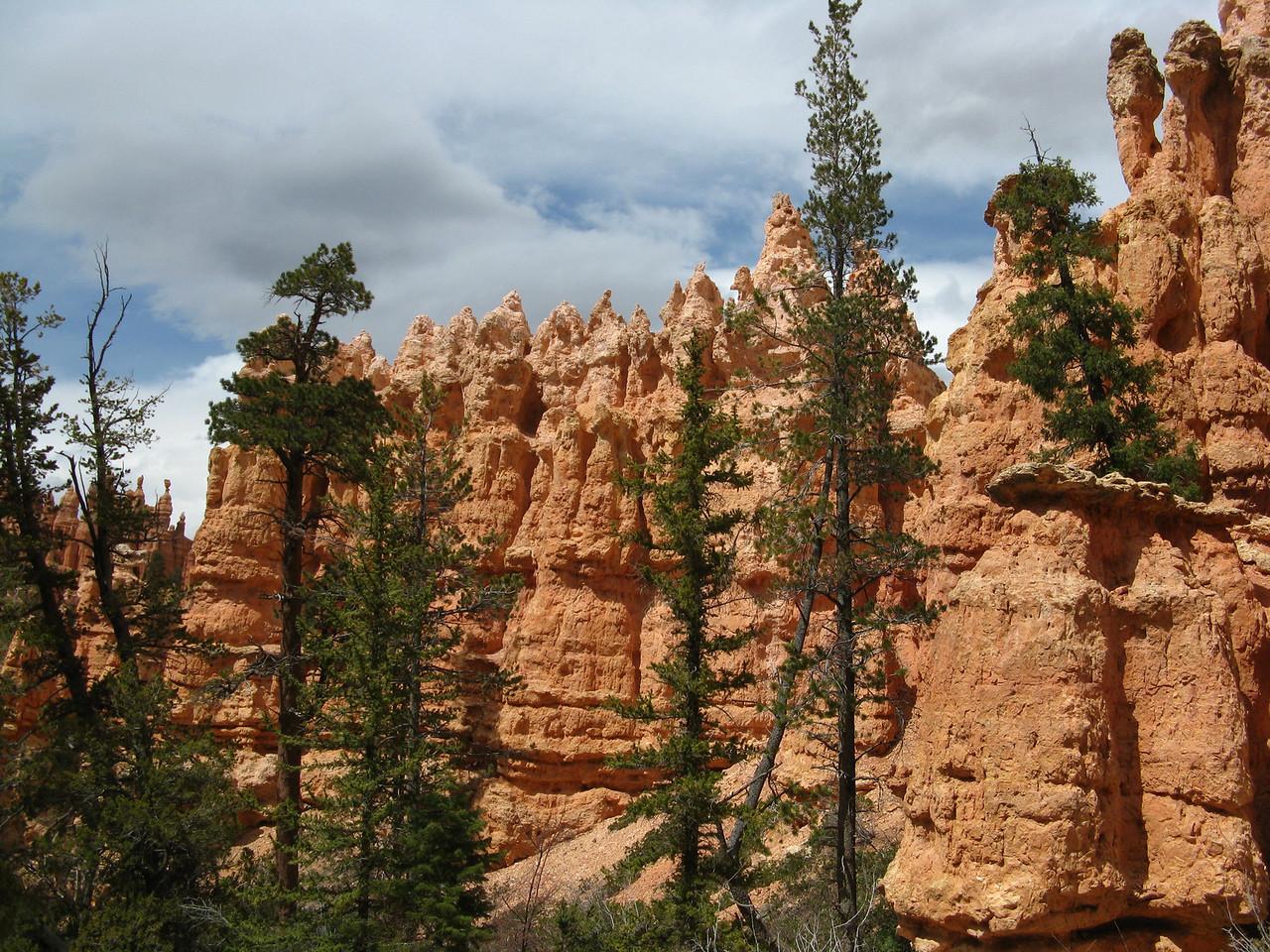 2011-04-20 Bryce trail 095