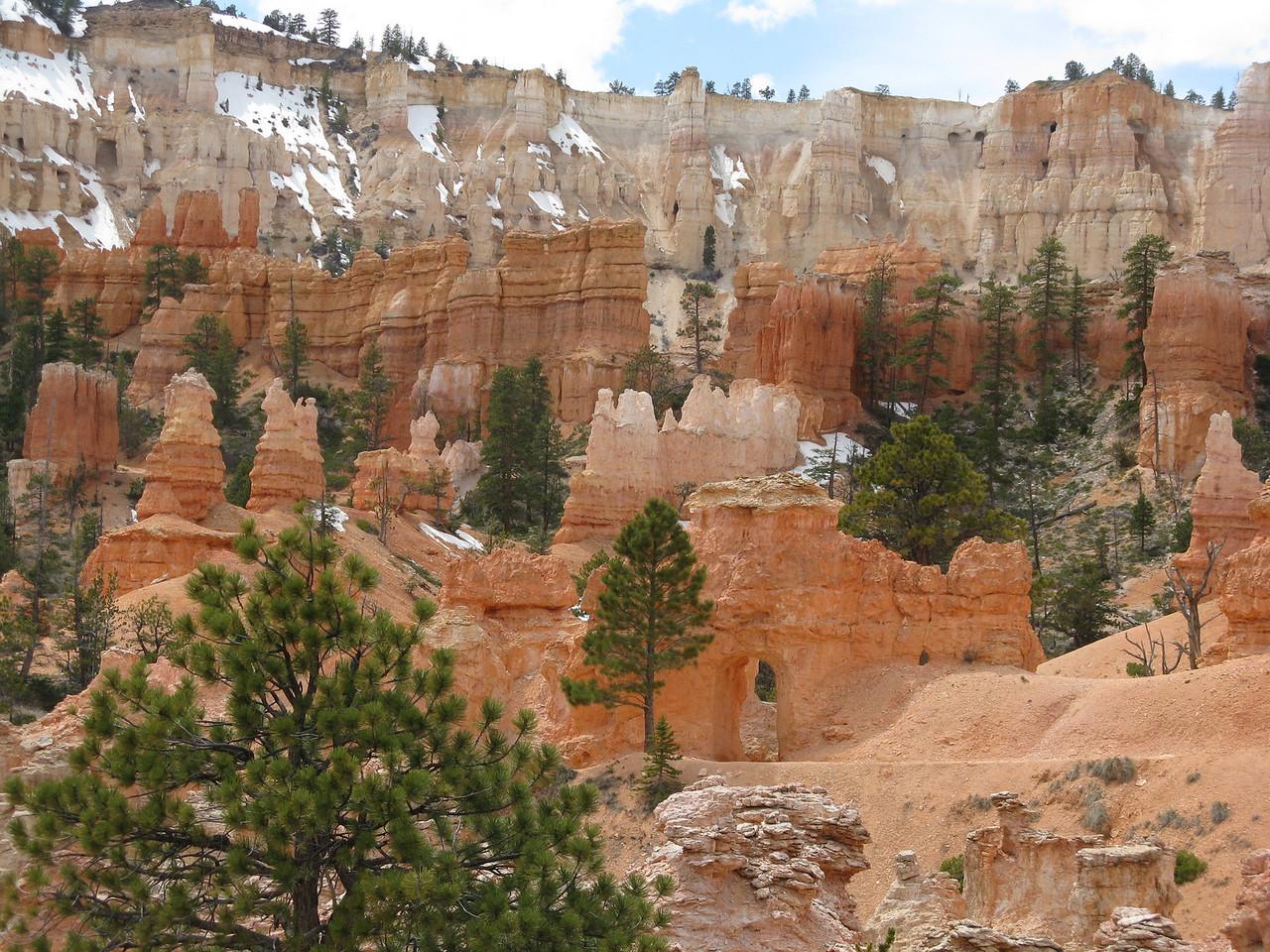 2011-04-20 Bryce trail 068