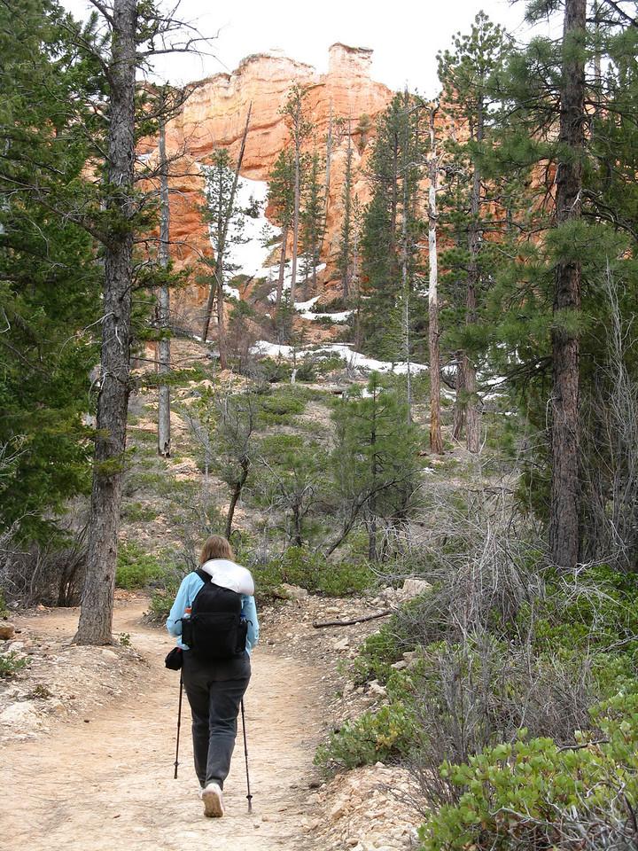 2011-04-20 Bryce trail 077
