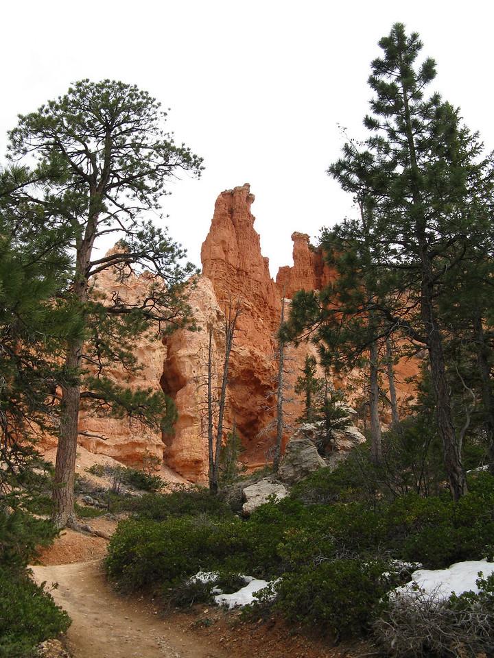 2011-04-20 Bryce trail 081