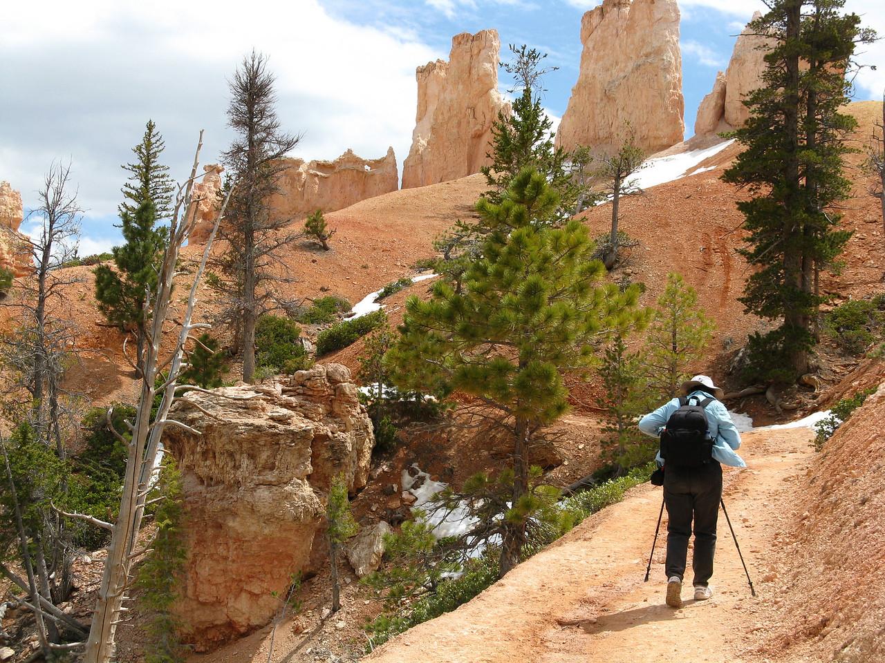 2011-04-20 Bryce trail 061