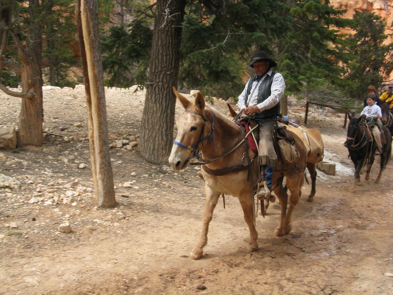 2011-04-20 Bryce trail 101