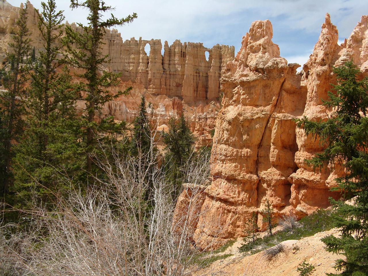 2011-04-20 Bryce trail 094