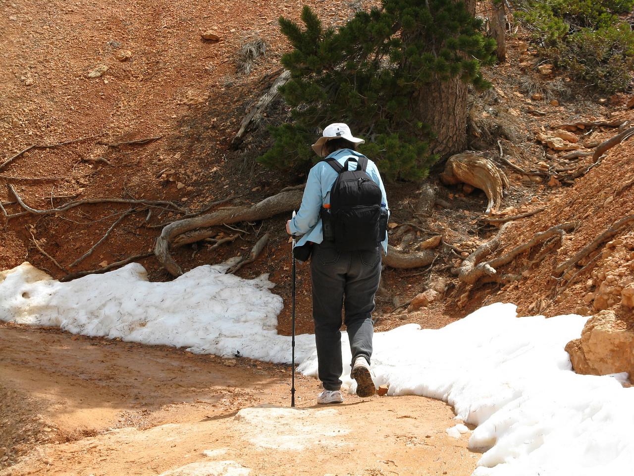 2011-04-20 Bryce trail 062