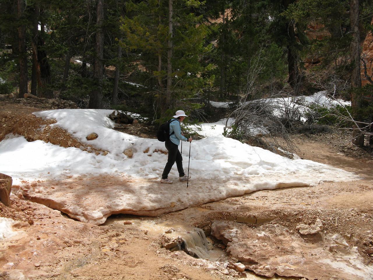 2011-04-20 Bryce trail 096