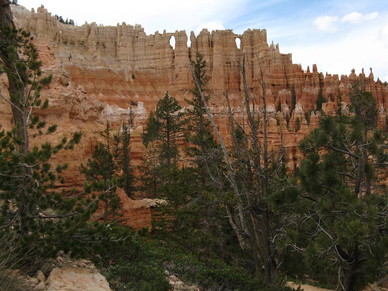 2011-04-20 Bryce trail 085