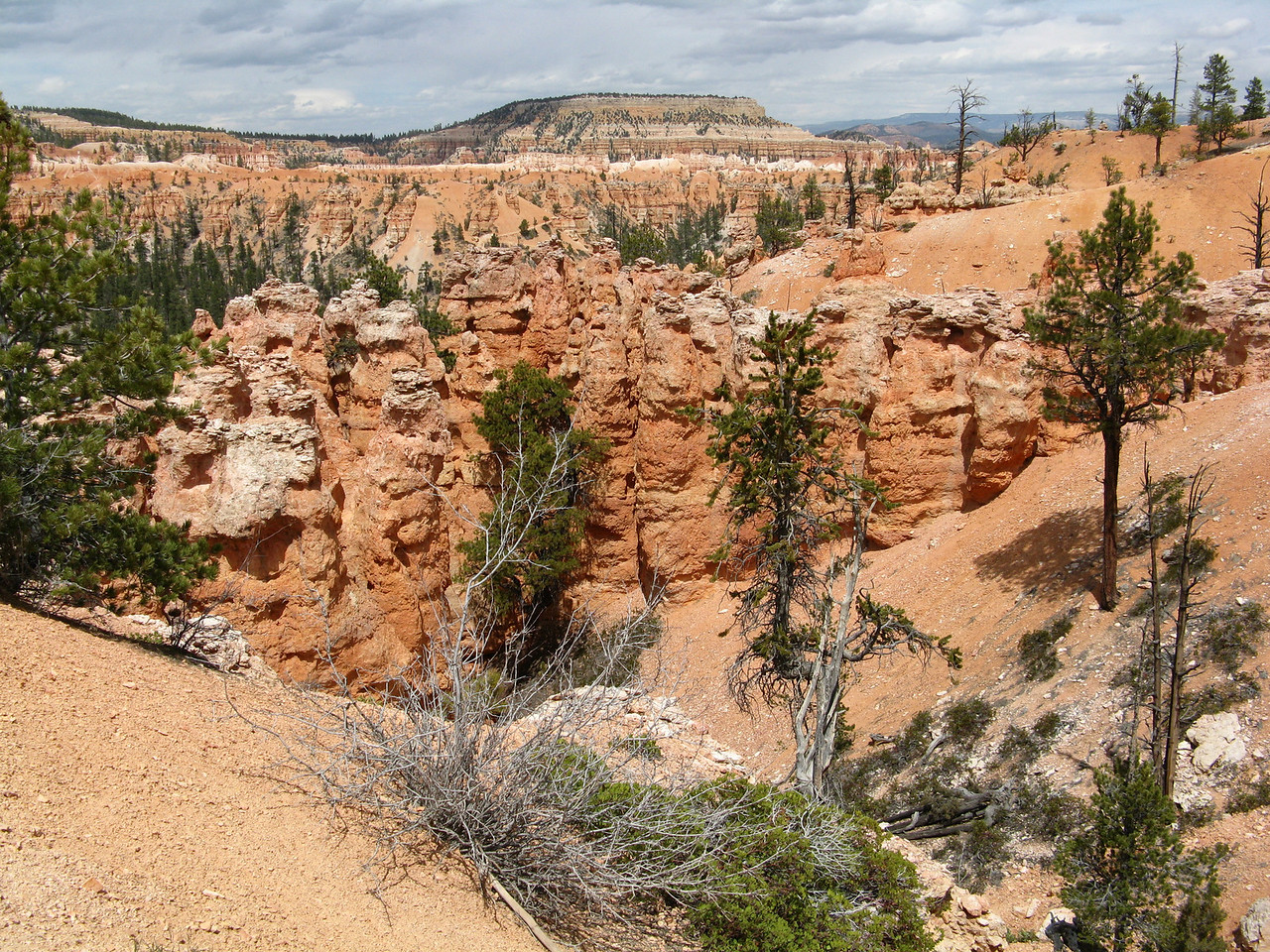 2011-04-20 Bryce trail 063