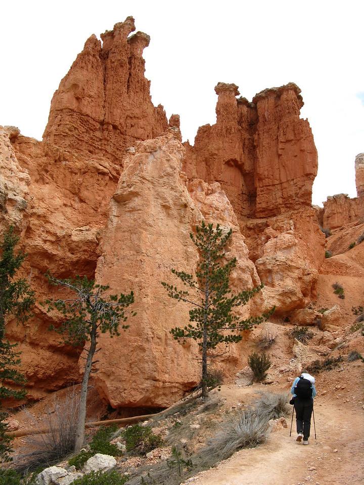 2011-04-20 Bryce trail 083