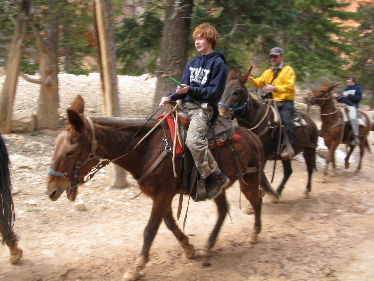 2011-04-20 Bryce trail 102