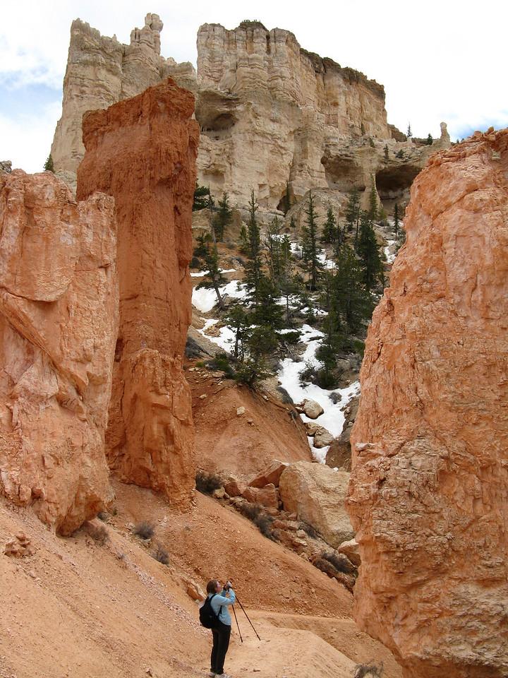 2011-04-20 Bryce trail 090