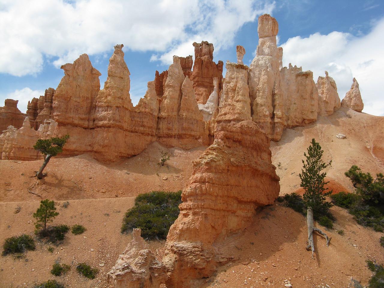 2011-04-20 Bryce trail 069