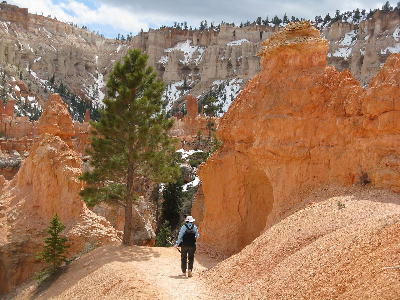 2011-04-20 Bryce trail 071