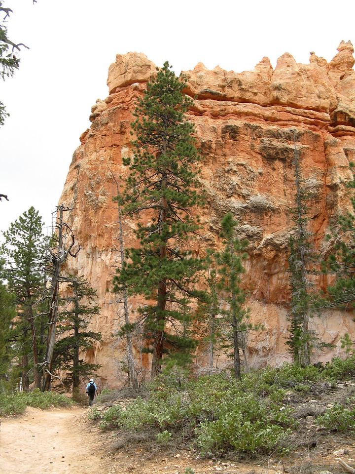 2011-04-20 Bryce trail 075