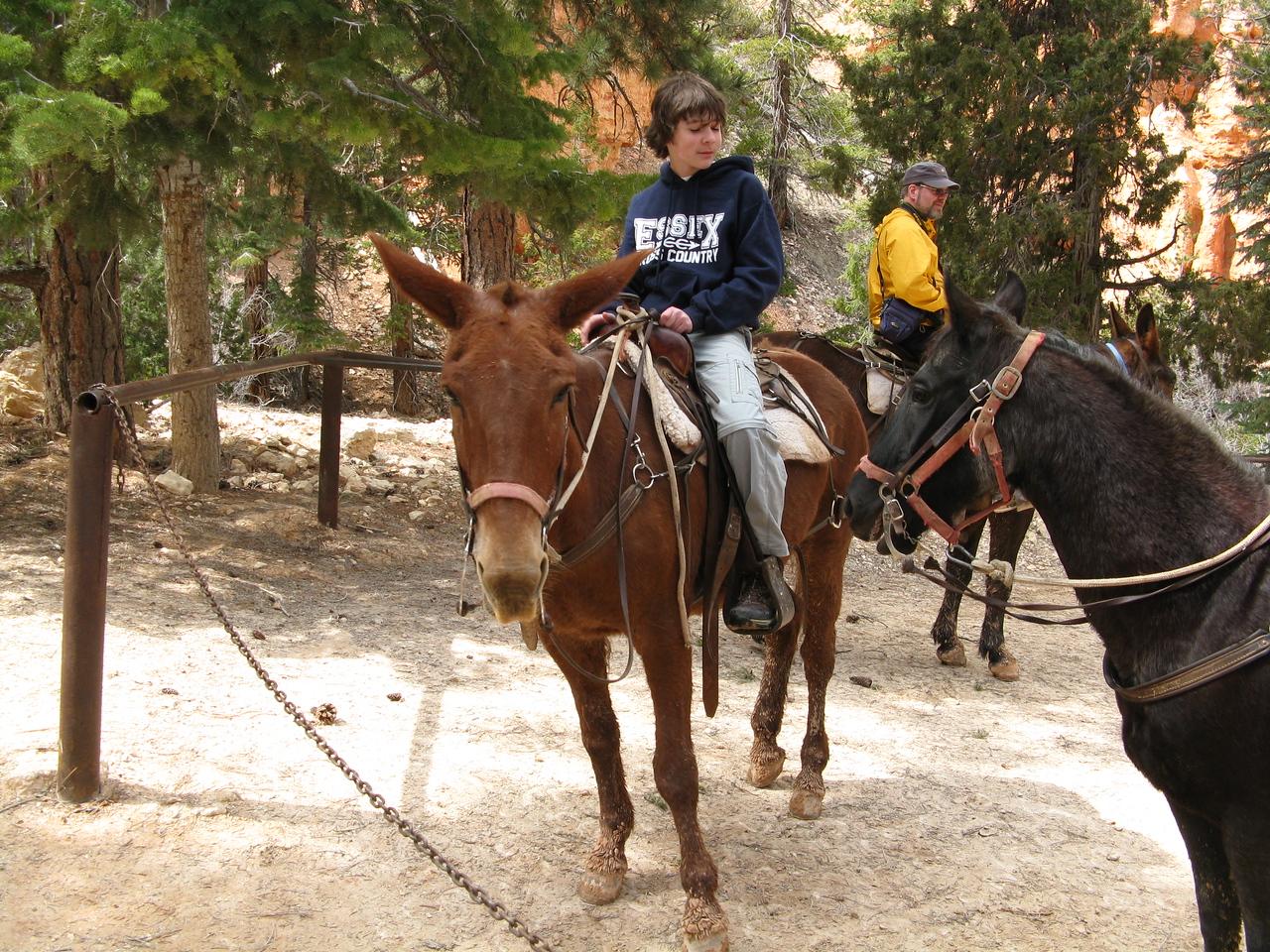 2011-04-20 Bryce trail 097