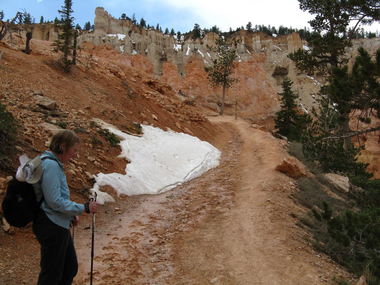 2011-04-20 Bryce trail 084