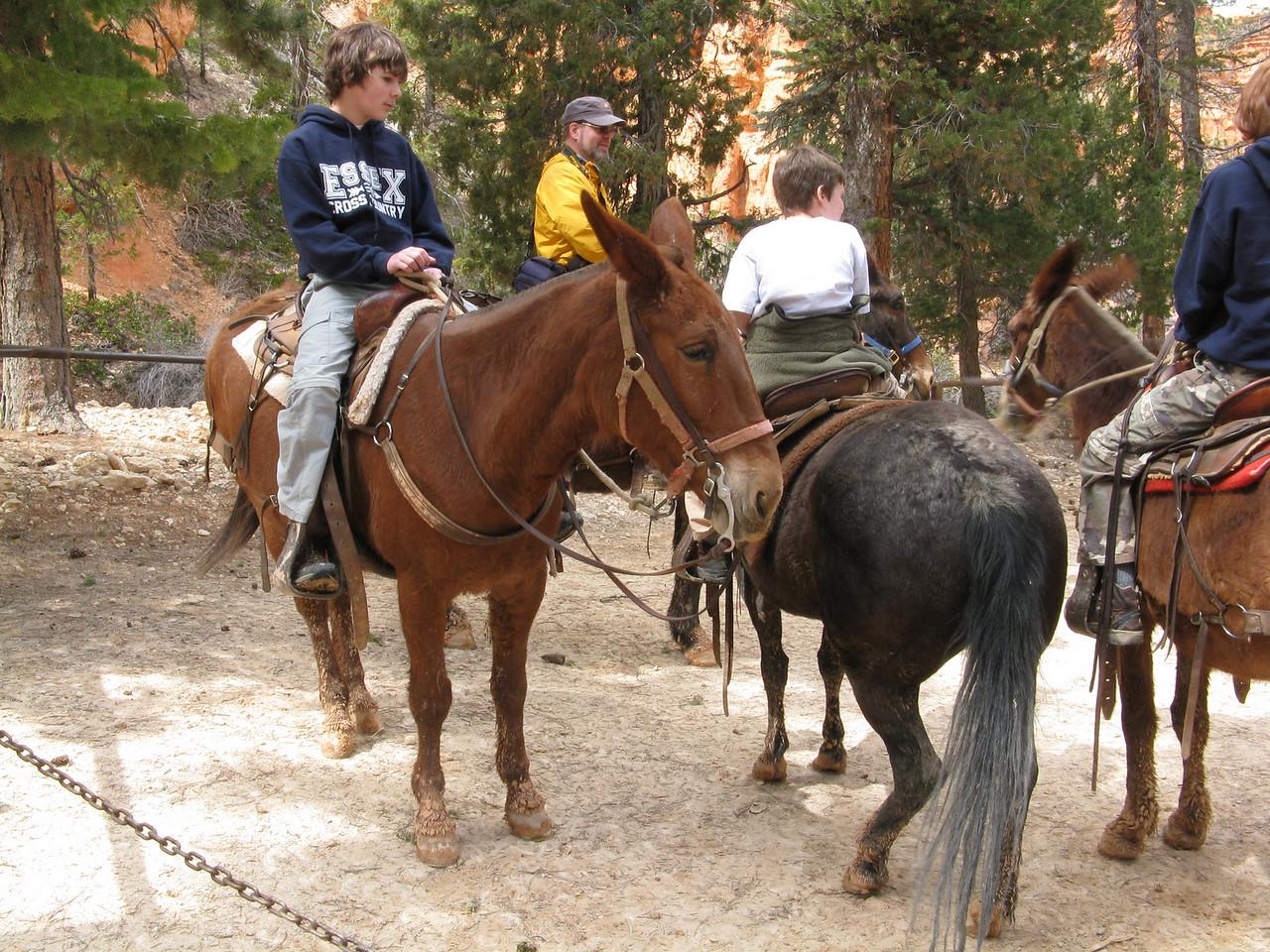 2011-04-20 Bryce trail 099