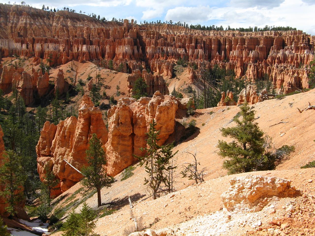 2011-04-20 Bryce trail 187