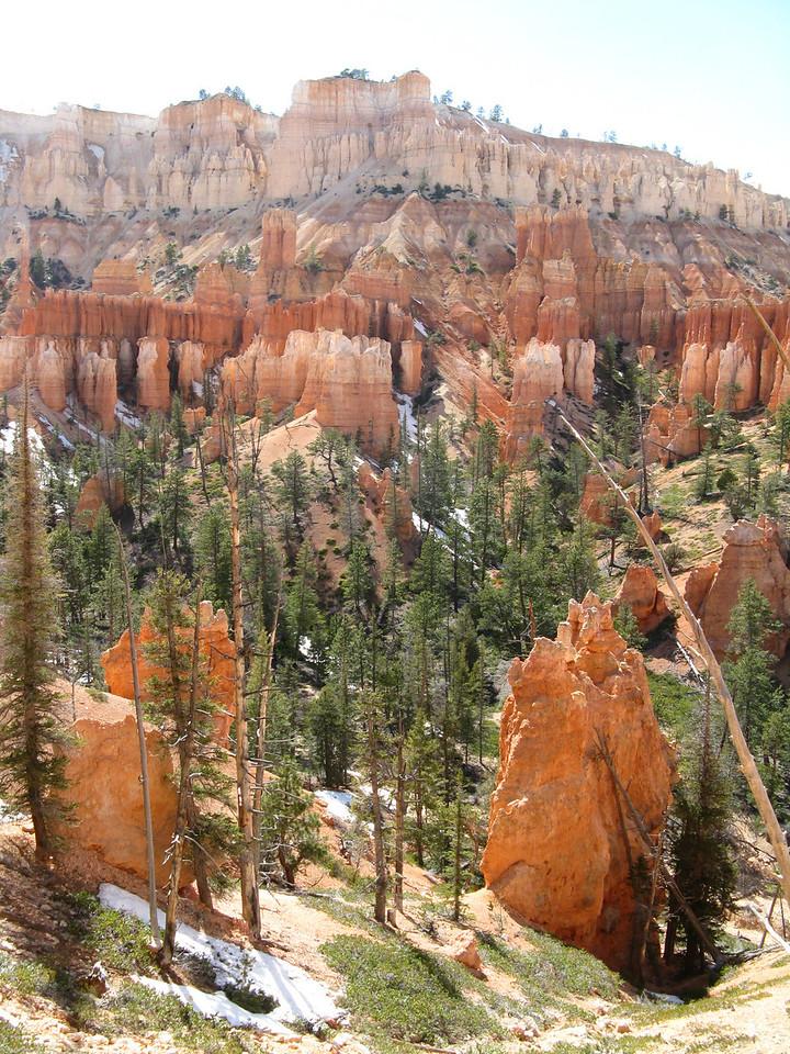 2011-04-20 Bryce trail 182