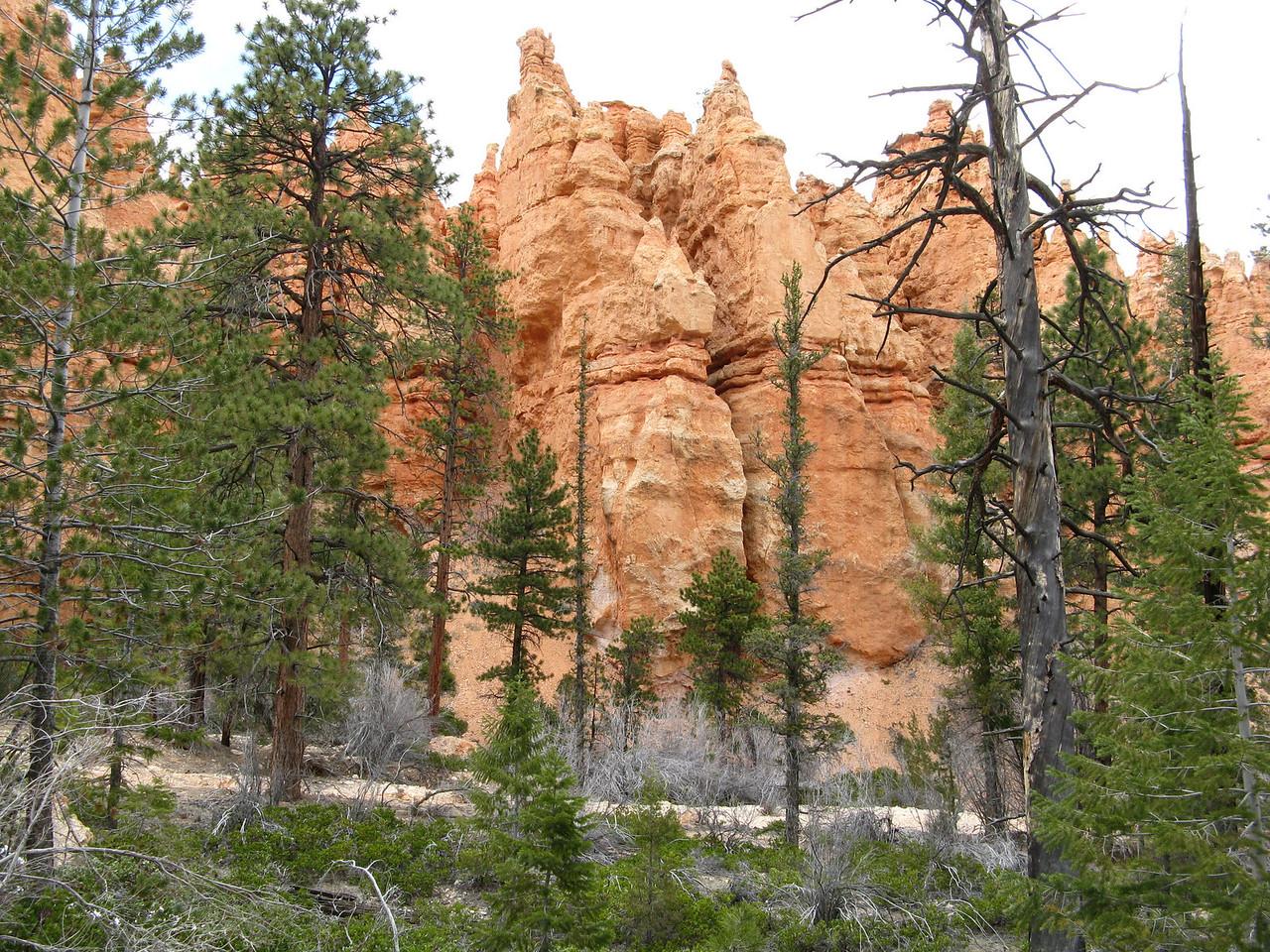 2011-04-20 Bryce trail 078