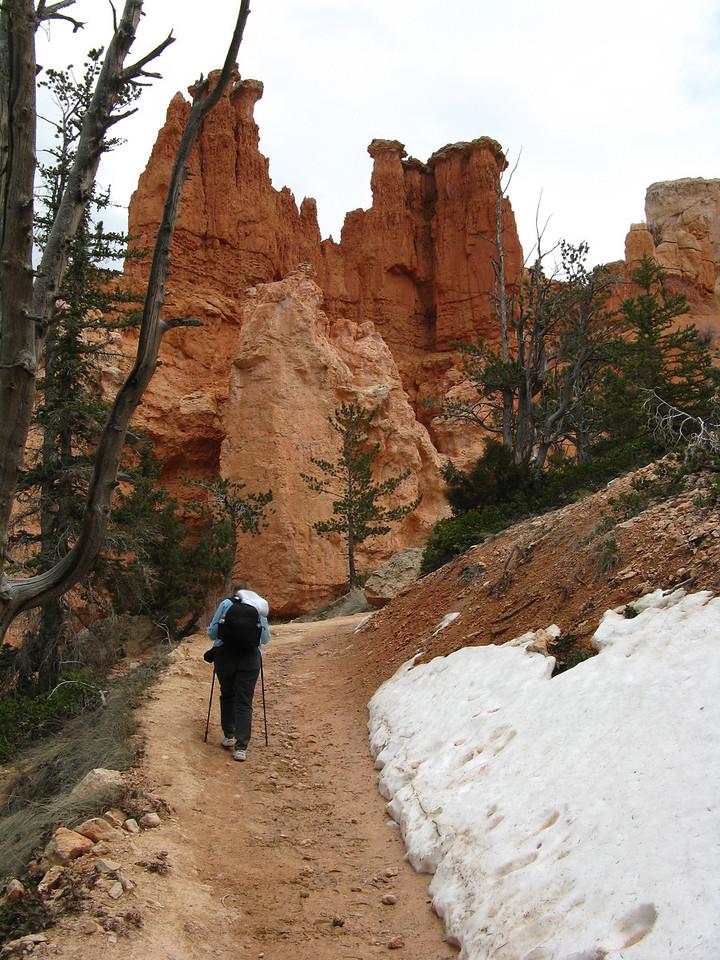 2011-04-20 Bryce trail 082