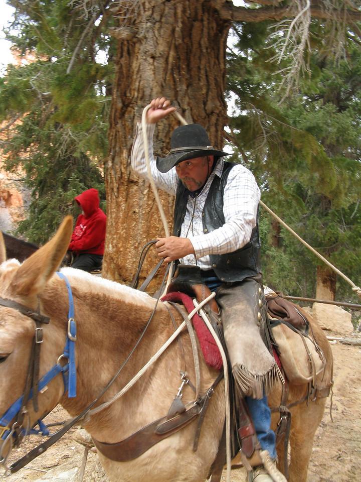 2011-04-20 Bryce trail 100