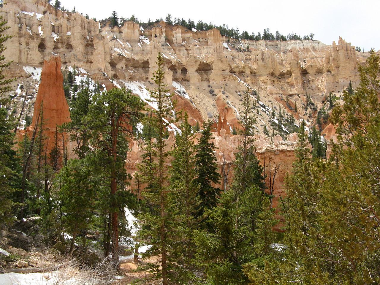 2011-04-20 Bryce trail 092