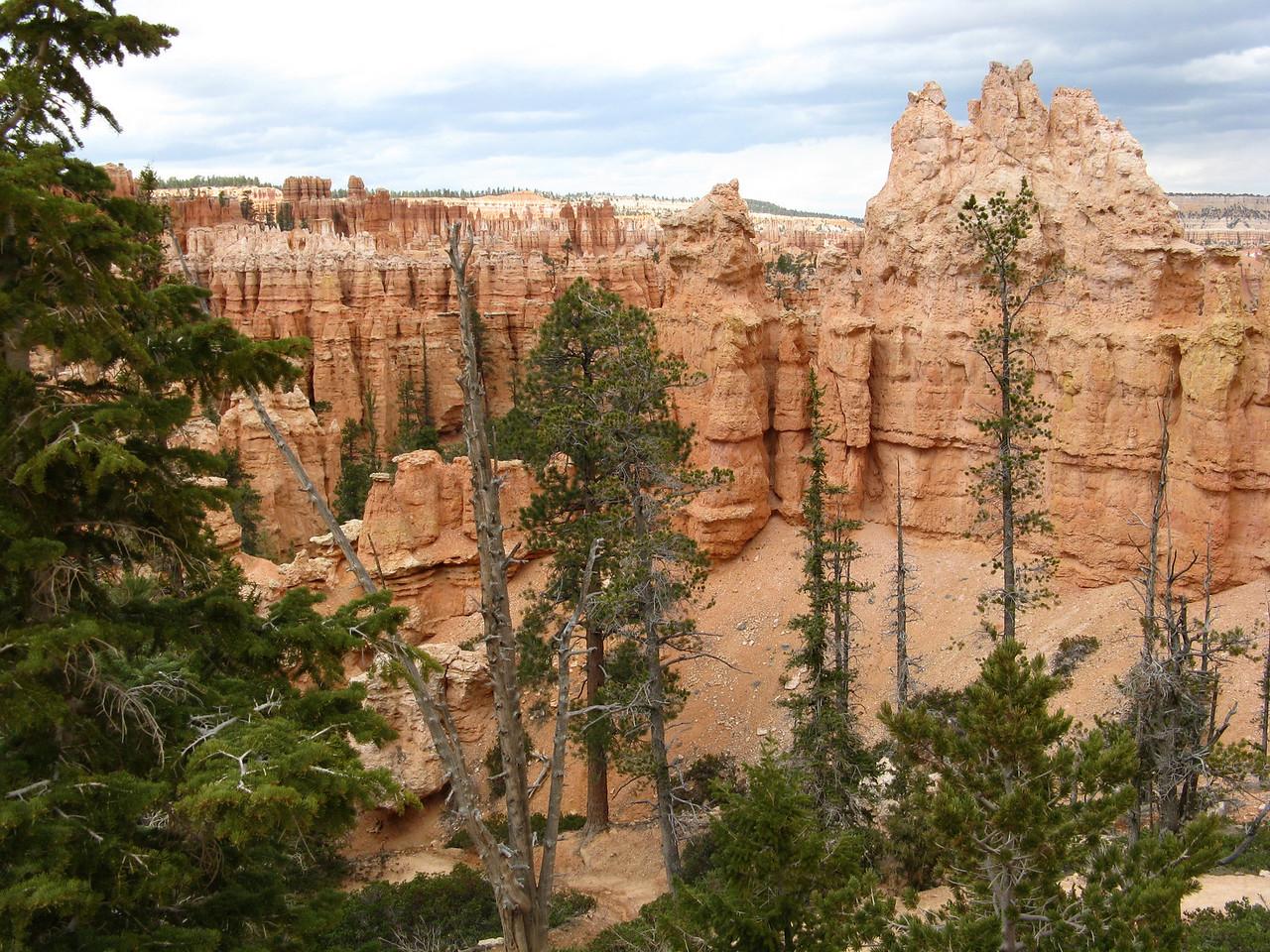 2011-04-20 Bryce trail 087