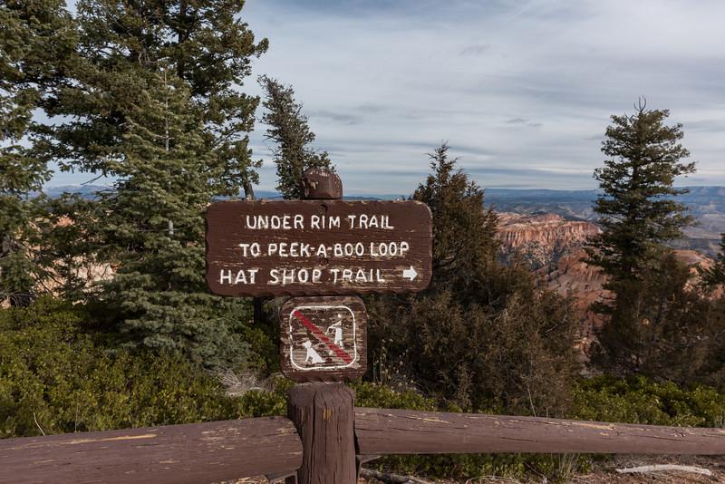Morning hike ... Peek-A-Boo Loop Trail 11-16-17