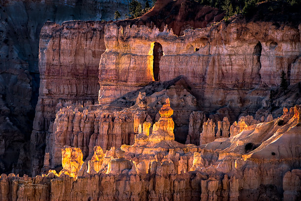 Glowing Hoodoos, Bryce