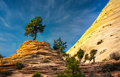 East Canyon, Zion