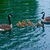 Loveland Eden Park 3