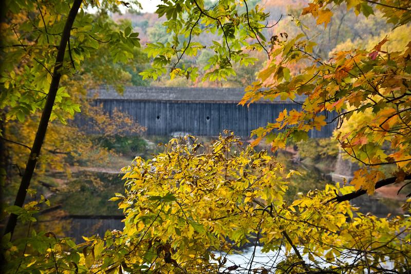 Schofield Covered Bridge Through Fall Trees, Tyler State Park, Newtown, Bucks County, PA