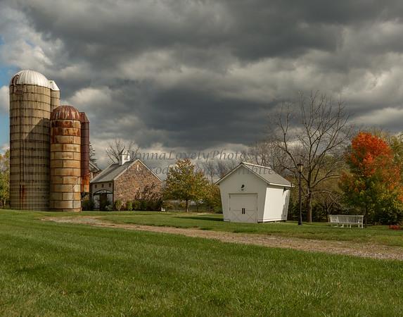 Newtown Farm_3824