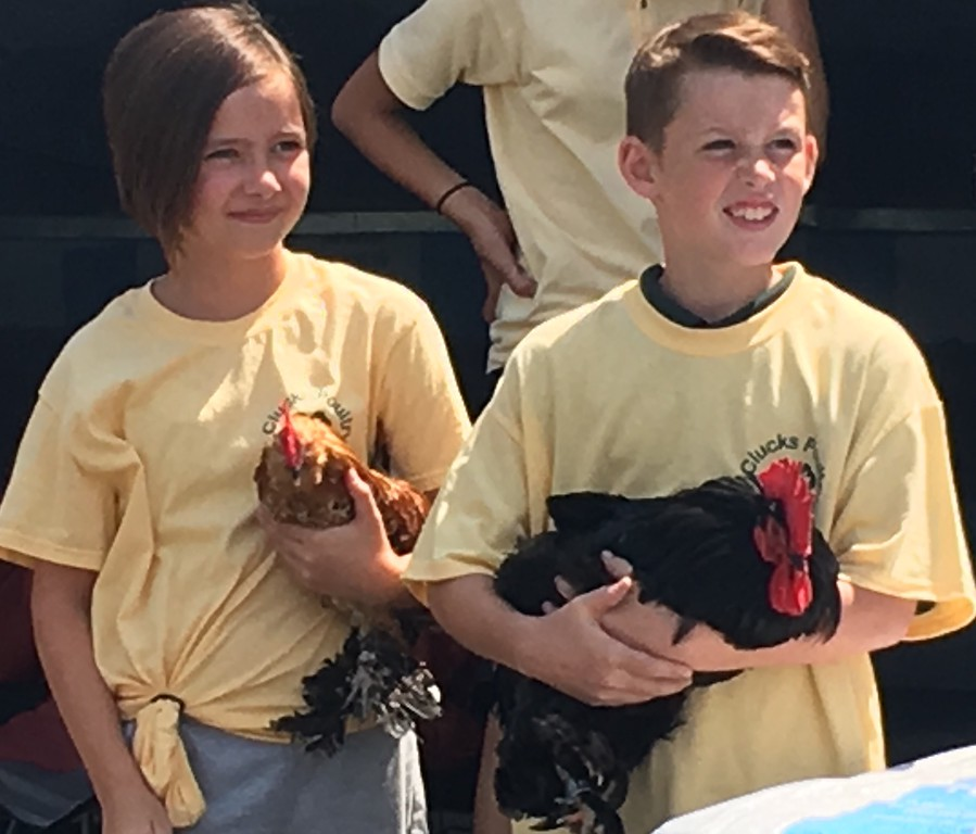 . Members of the Clucks Poultry Club show off their chickens.