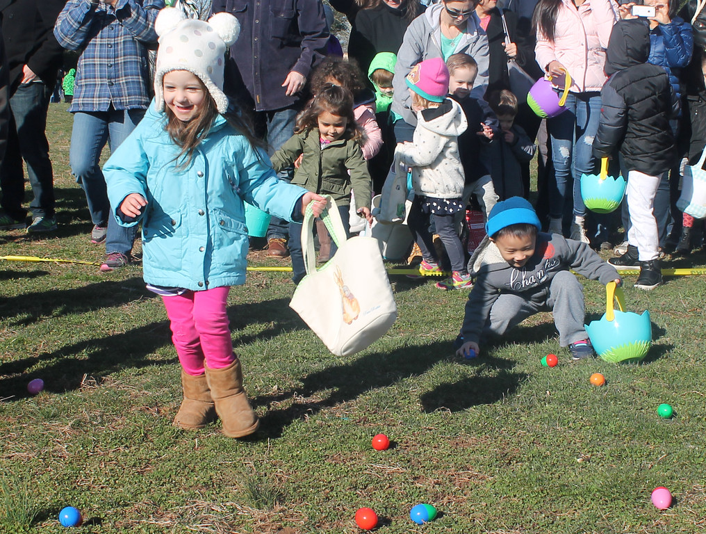 . The egg hunt gets underway.