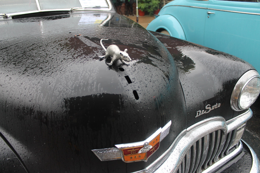 . This little guy appears to be slipping across the hood of this DeSoto.  But appearances can be deceiving. He\'s anchored on there good and tight as a hood ornament.