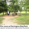Flemington Dog Park