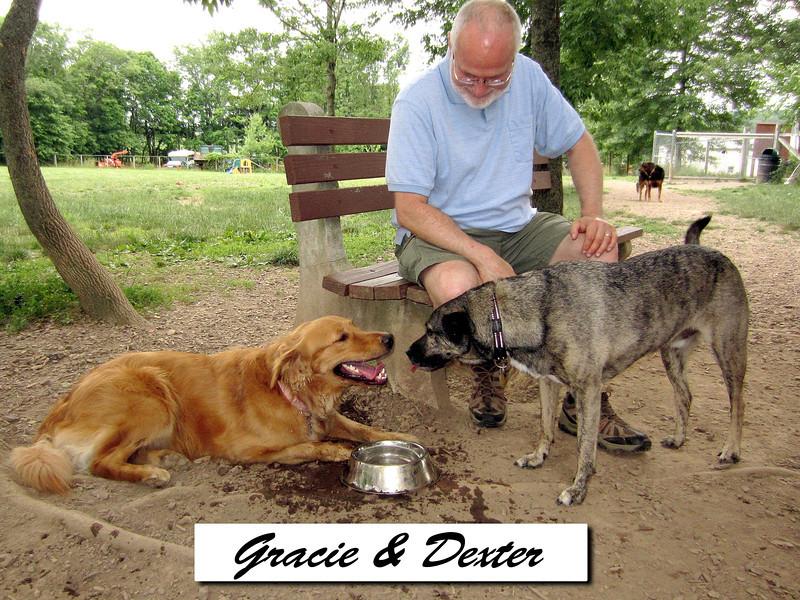 Gracie & Dexter